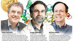 Nobelova cena za dýchání buněk. Objev může pomoci při boji proti nádorům