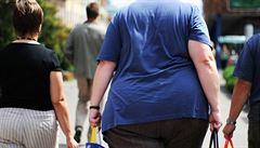 Hormonálně znečištěné prostředí přispívá k nemocem i obezitě