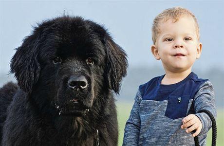 Soužití s malým dítětem může být složité. Ukažte psovi, že lidské mládě je fajn