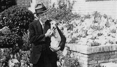 1920: Čapkův úrodný rok. Co předcházelo nástupu slavného autora do Lidových novin?