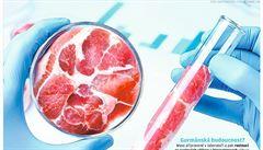 Lepší maso 'ze zkumavky'. Levnější a chutnější varianta, kterou vědci stále ladí