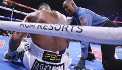 VIDEO: Nejen brutální Wilder s Canelem. Boxerský ring zažil v roce 2019 řadu drsných K.O.