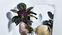 Dokonalá kombinace. Propojení pěstitelů květin a výrobců květníků