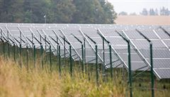 Česko sníží podporu soláru, kterou kritizoval i Zeman. Ušetříme státu i rodinám, říká Havlíček
