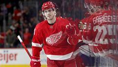 Velká posila pro Třinec. Před začátkem NHL ho dočasně posílí útočník Detroitu Zadina