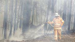 Za požáry v Austrálii nesou vinu klimatické změny, míní odborníci. Přinést mohou i další nárůst teplot