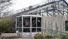 Přihlásily se ženy, které zřejmě způsobily požár v německé zoo. Do vzduchu pustily pět lampionů štěstí
