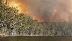 Australské plameny: Mstí se klima za nedostatek ochrany?