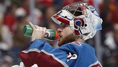Historický zápis. Do play off NHL zasáhli čtyři čeští brankáři, více než během éry Haška