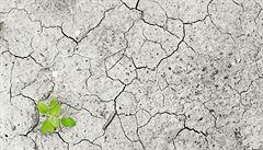 Nedostatek vody, plastový odpad - řešení problémů životního prostředí