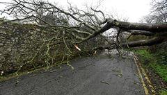 Vítr v Královéhradeckém kraji lámal stromy a zastavil vlaky. Hasiči vyjeli ke 40 případům