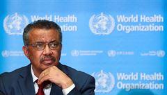 Světová zdravotnická organizace se chce podílet na objasňování původu nového koronaviru