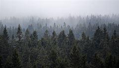 V noci v Česku mrzlo, u šumavské Kvildy bylo minus 10,1 stupně