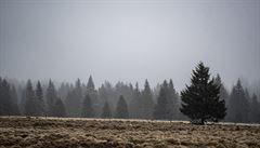 V listopadu meteorologové očekávají mírně nadprůměrné teploty a méně srážek