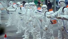 Virus se v těle nereaktivuje, potvrdili vědci. Vyléčení podle nich nejsou hrozbou, Korea proto mění strategii