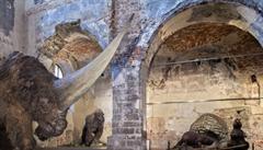 Ve zlínském zámku je k vidění mamut a další giganti doby ledové