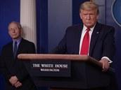 Spojené státy v příštích týdnech získají 110 tisíc ventilátorů, podle Trumpa nebudou potřeba