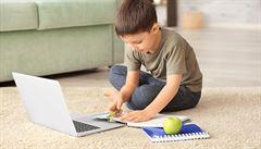 Výuka přes internet je obtížnější. Kde jsou slabiny online vzdělání?