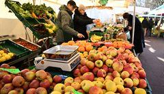 V Británii nemá kdo sklízet ovoce, chybí sběrači z východní Evropy. Farmy zvažují pronájem letadel