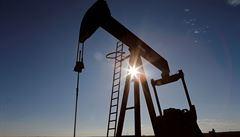 Ropa obnovila silný propad, později ztráty zmírnila. Vliv má nedostatek skladovacích kapacit i koronavirus