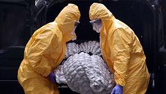 Belgie hlásí přes 4000 úmrtí na covid-19, Nizozemsko skoro 3000. Počty nakažených stoupají