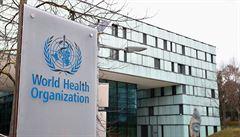 Nejde jen o WHO. S kritikou by se mělo počkat až po pandemii, uvedl její zástupce