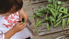 Co dělat s dětmi, když je venku krásně? Naučte je zahradničit