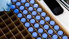 Vláda uvolnila 205 milionů korun na nákup léku remdesivir. V říjnu by Česko mělo mít 10 tisíc dávek