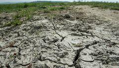 PETRÁČEK: Jak klimatickou nouzi nahradí selský rozum. Lidé chápou, že bez omezení odběru vody to nejde
