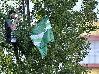 Fanoušek Bohemians sleduje utkání zavěšený na stromě u stadionu.