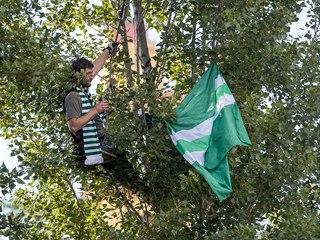 Fanoušek Bohemians sleduje v koruně stromu zápas svých oblíbenců s Teplicemi.