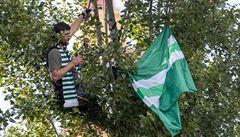 Kreativní fanoušci Bohemians si fotbal ujít nenechali: 'Tým šel zatleskat i fanatikovi na stromě'