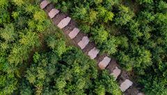 Chci, aby tu lesy zbyly i pro dceru, říká Ondřej Brož. V Beskydech kvůli suchu vytváří jedinečná opatření