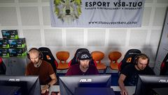 Nová esportová asociace na českém trhu. CESA chce sdružit hráče, týmy i organizátory