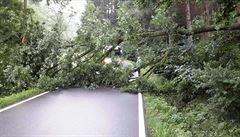 Hasiči v pohotovosti. Bouřky na Olomoucku způsobily popadané stromy a zatopené sklepy