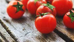 Evropa poznala rajčata díky Aztékům. Ještě v roce 1823 ale museli experti ujišťovat, že nejsou nebezpečná
