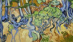 Vědci našli místo, kde van Gogh namaloval svůj poslední obraz. Povedlo se to díky sto let staré pohlednici