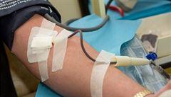 Krevní plazma od lidí, kteří koronavir přestáli, je nová mimořádná léčba v USA
