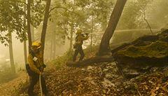 Situaci v Kalifornii může zhoršit nástup silného a suchého větru, zemi nadále sužují rozsáhlé požáry