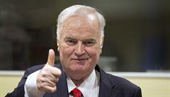 Soud vynese rozsudek nad Ratkem Mladičem, v regionech se konají demonstrace Milionu chvilek