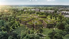 Dům ochladí zelená střecha, při stavbě vsaďte na dřevo. Architekt radí, jak čelit oteplování ve městech