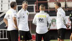 Fotbalisté čekají na výsledky testů. Budou hrát? Tvrdík: Klidný rozhodně nejsem