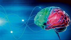 Hledá se doping pro mozek. Vědci varují před výživovými doplňky pro stimulaci