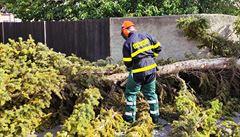 Na Moravě byly tisíce domácností bez proudu kvůli silnému větru