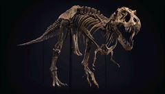 Kostra tyrannosaura se vydražila za téměř tři čtvrtě miliardy, suma překonala dosavadní rekord