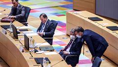 Lídři Evropské unie budou o covidu jednat na dálku každý týden, řekl premiér Babiš