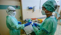 V Česku se dosud potvrdily desítky případů indické a jihoafrické varianty koronaviru
