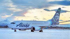 Boeing při přistání na Aljašce zabil medvědici, dvouleté mládě nehodu přežilo