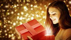 Vánoční trháky podle e-shopů: čtečky, pelíšky i luxusní vibrátory