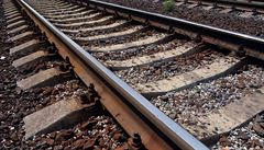 Jatka na kolejích. Vlak narazil do stáda krav, 17 zvířat uhynulo